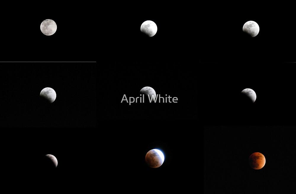 Lunar Eclipse by April White