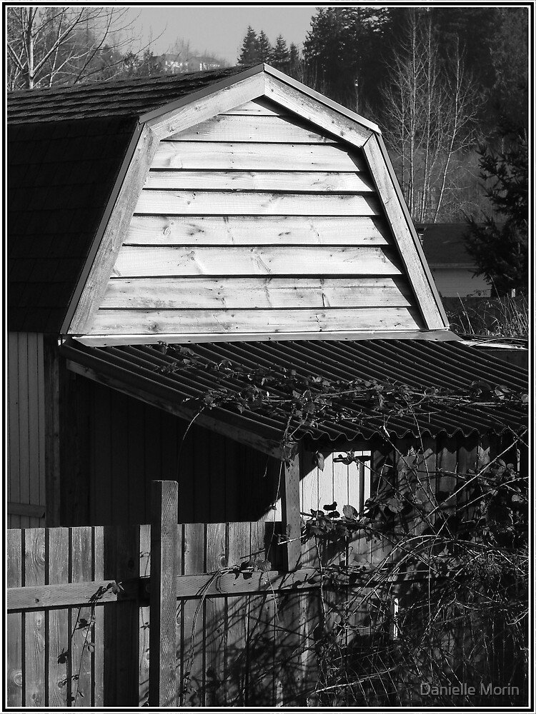 Forgotten shed by Danielle Morin