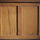 Cupboard Door by Ethna Gillespie