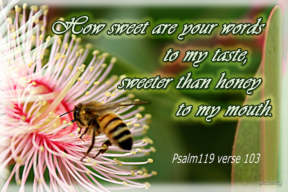 Psalm 119 verse103 by picketty
