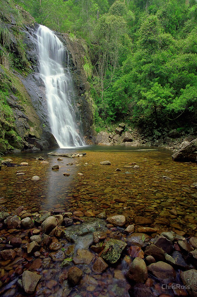 Wilson River Falls by ChrisRoss