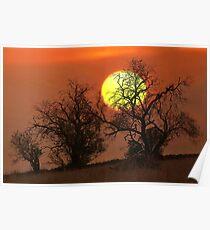 1368 Bushfire Sunset Poster