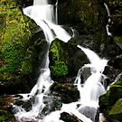 Woodland waterfall by Victoria Ashman