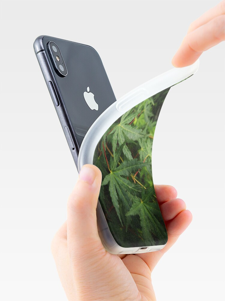 Alternate view of Japanese Maple Leaves in Spring iPhone Case & Cover