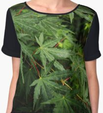 Japanese Maple Leaves in Spring Chiffon Top