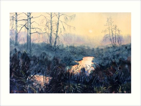 """Sunset on Skipwith Common"" by Glenn  Marshall"