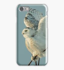 juvenile male snowy owl iPhone Case/Skin