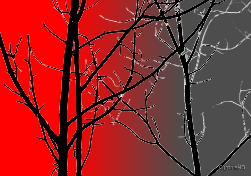 Red And Gray by Cynthia48