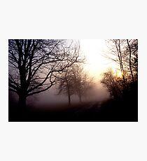 Winters Landscape Photographic Print