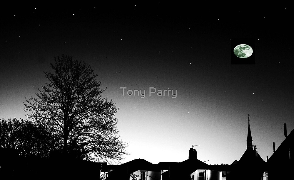 SUNSET MOON RISE by Tony Parry