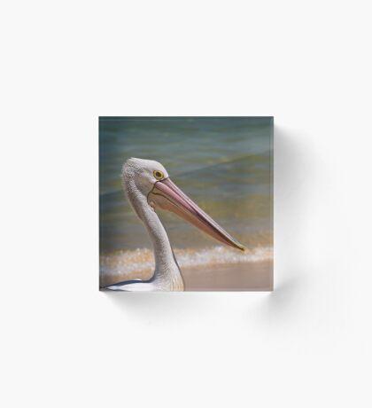Aussie-Pelikanprofil Acrylblock
