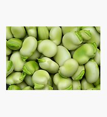 Broad Beans Photographic Print