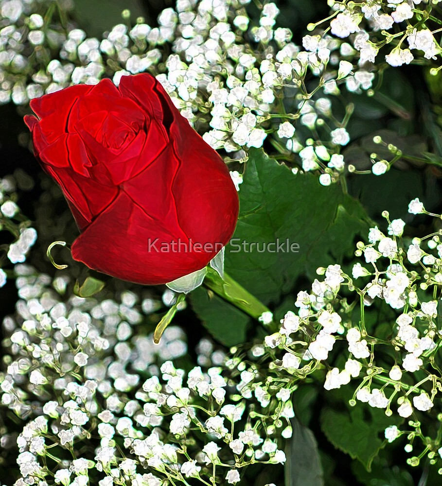 Red Rose With Baby Breath by Kathleen Struckle
