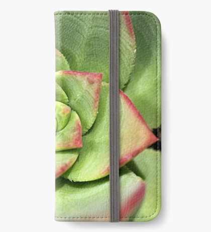 Hens And Chicks Succulent iPhone Wallet
