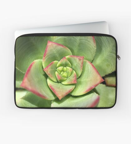 Hens And Chicks Succulent Laptop Sleeve