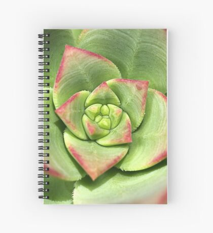Hens And Chicks Succulent Spiral Notebook