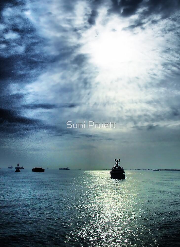 Color Version - On The Bay by Suni Pruett