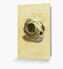 cat skull decorated with wasabi flowers Greeting Card