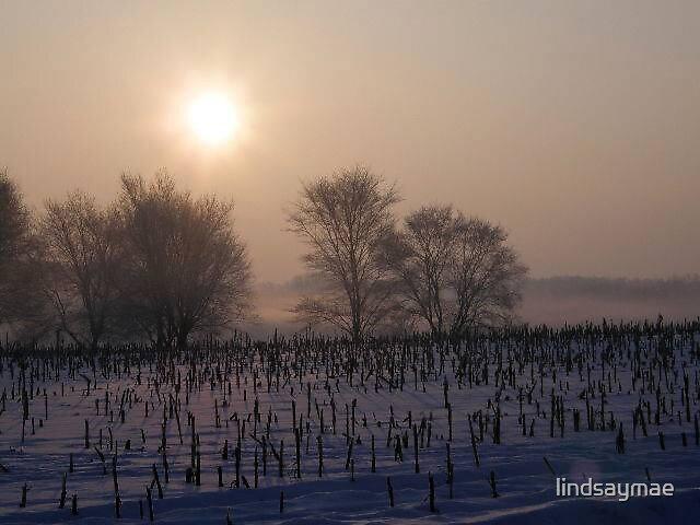 The frosty horizon by lindsaymae