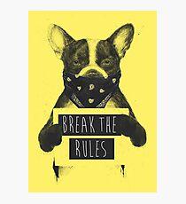 Rebel dog (yellow) Photographic Print