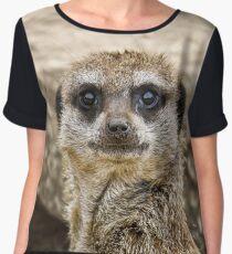 Meerkat Chiffon Top