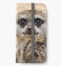 Meerkat iPhone Wallet/Case/Skin
