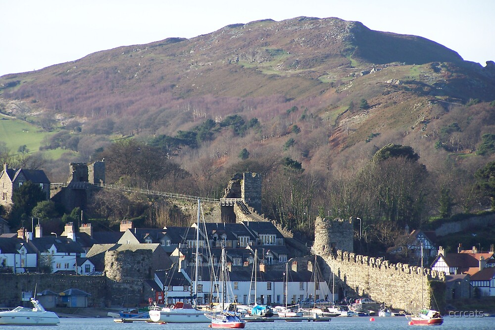 CONWY QUAY.  by ccrcats