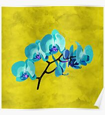 Orchid blue Poster