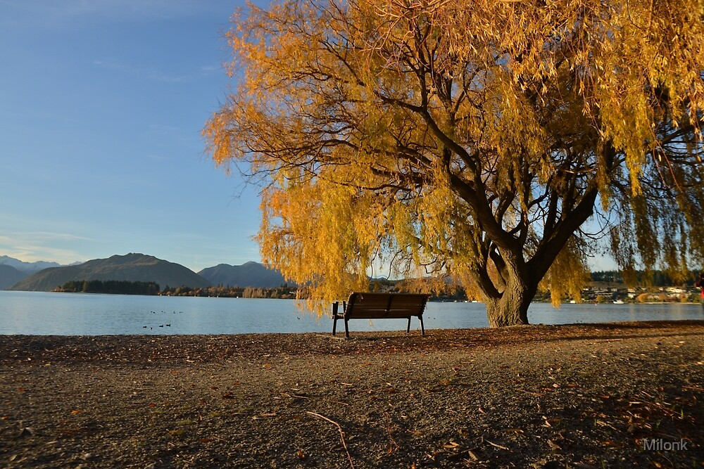 Fall trees beside lake by Milonk