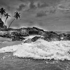 Sri Lanka by Brendan Buckley