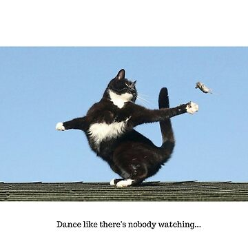 T-Shirt Dancer Cat by movedance