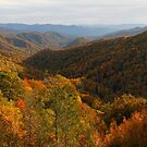 Fall in the Smoky Mountains by dlhedberg