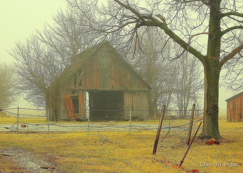 One Foggy Morning..... by Grinch/R. Pross