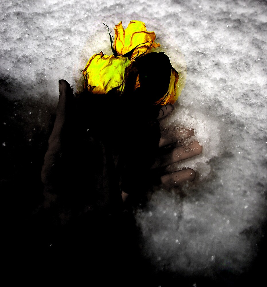 Cold Embrace by Michael Gatch