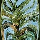 Plant by Loredana Messina
