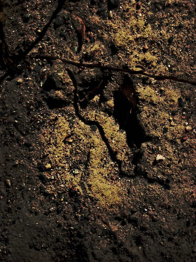 Moose Track! by Lucien88