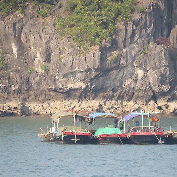 Fishing Boats Ha Long Bay, Vietnam by shawnzahavi