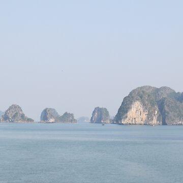 Ha Long Bay, Vietnam 3 by shawnzahavi