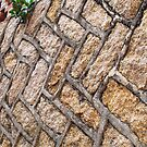 Alley Wall  by Ethna Gillespie
