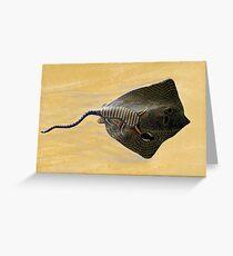 Stingray Dreaming Greeting Card