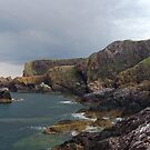 St Abbs Head by Alan Rodmell