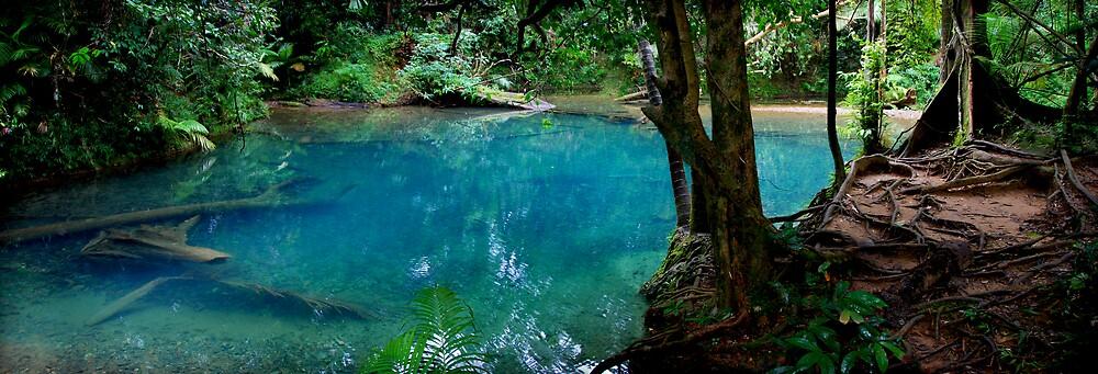 Blue Lagoon by Frank  McDonald