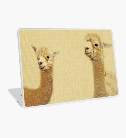 Porträt von zwei Alpakas Laptop Folie