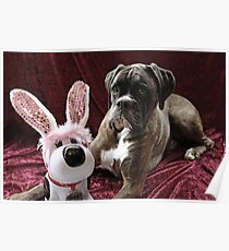 You Can't Fool Me... It's Not The Easter Bunny - Boxer Dogs Series Poster