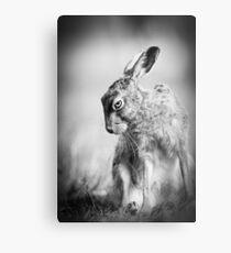 Dark Hare Metal Print