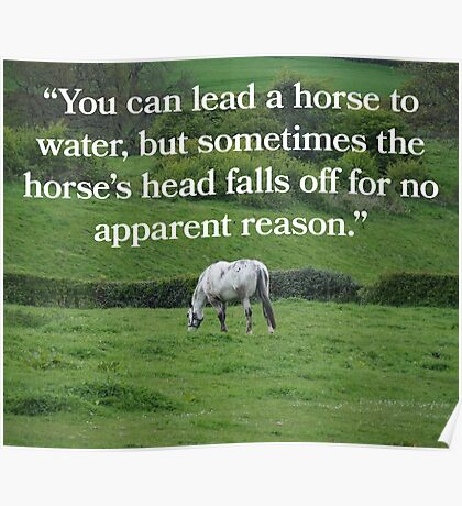 NDVH You can lead a horse to water... Poster