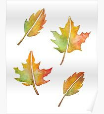 Fall Leaves Set Poster