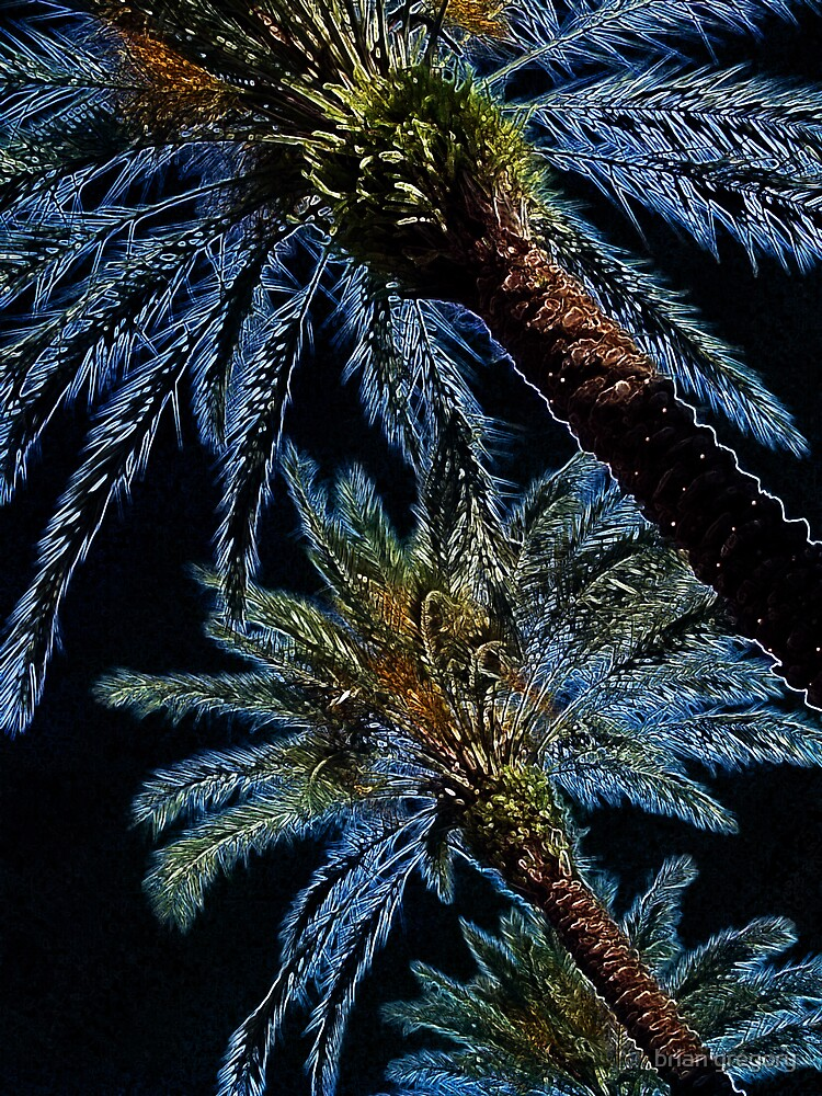 palms by brian gregory