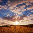 September Sky by David Lamb