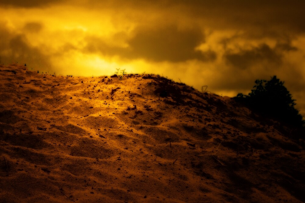 WHISPERS IN THE SAND by leonie7